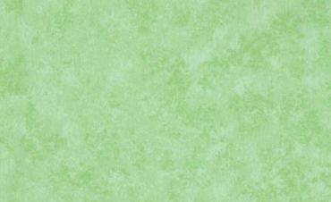 2800-G45 Uni, plain pistache
