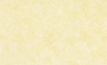 2800-Q03 Uni, plain creme, beige ligth cream